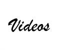 Videos von Ameisen