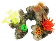 Koralle mit Pflanzen
